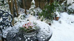 大雪の日も温かく2